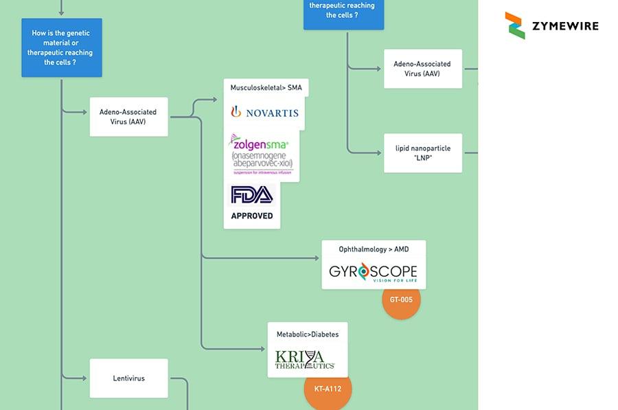 In Vivo Gene Therapies