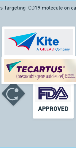 approved CAR T therapies